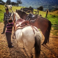Getting the horses ready for a ride.