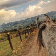 A majestic afternoon ride in the hills of San George, Colombia
